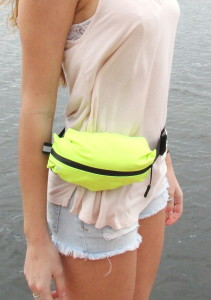 Fanny Pack 3